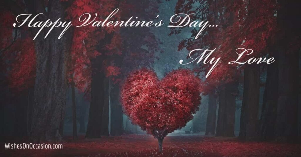 Happy Valentine's Day My love. Image and Quotes